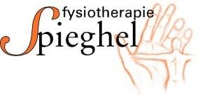 Fysiotherapie-spieghel-logo